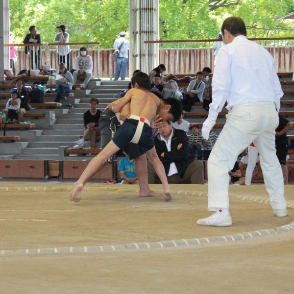 2018年度 第21回わんぱく相撲堺大会