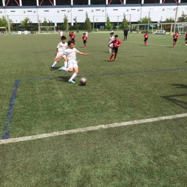 2019年度<br>JCカップU-11少年少女サッカー堺高石大会