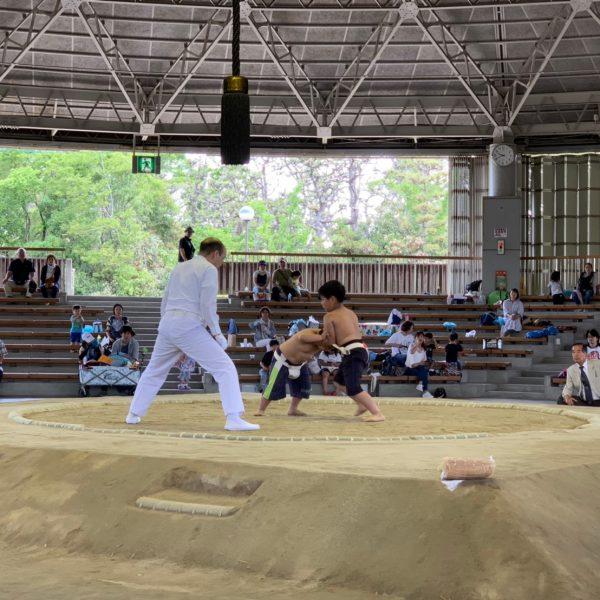 2019年度<br>第22回わんぱく相撲堺大会
